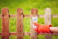 Painting wooden fence applying protective varnish to a Royalty Free Stock Images