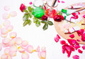 Paints and brushes with rose petals.Workplace of artist,designer Royalty Free Stock Photo
