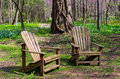 Pair of adirondack chairs in the woods Royalty Free Stock Photo