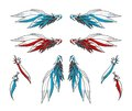 Pair of Angelic Wings plus Single Feathers Royalty Free Stock Photo