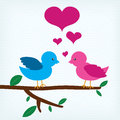 Pair of birds in love sitting on a tree branch Stock Images