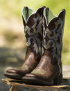Pair of brown fancy western boots on rock with blurred green background Stock Images