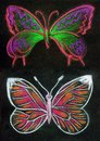 Pair of butterfly design pastel drawing on black background Stock Images
