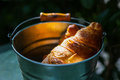 Pair of croissants in a tin bucket lit by strong morning sun  li Royalty Free Stock Photo