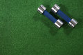 A pair of dumbells on a grass background