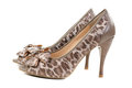 A pair of female leopard shoes Royalty Free Stock Photos