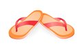 Pair of flip flops isolated on a white background vector illustration eps gradient meshes Stock Photography