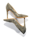 Pair of high heeled stiletto court shoes Royalty Free Stock Photo