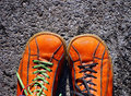Pair orange shoes grey background Royalty Free Stock Photo