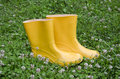 Pair rain rubber yellow boots on grass Royalty Free Stock Photo