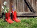 Red rubber boots with flowers on wood Royalty Free Stock Photo