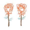 Pair of Roses. Hand Drawn Roses.