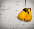 Pair of yellow boxing gloves hanging on a brick wall Royalty Free Stock Photography