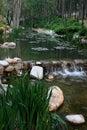 Paisagem chinesa do parque Fotos de Stock Royalty Free