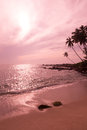 Paisagem cor de rosa tropical Foto de Stock