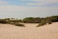 Paisaje de la duna Fotografía de archivo