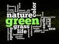 Palabras verdes del ambiente de la naturaleza Imágenes de archivo libres de regalías