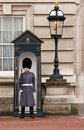 Palace Guard Royalty Free Stock Photos