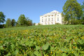 Palace on hill in Pavlovsk park Royalty Free Stock Photo