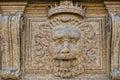 Palazzo pitti lion Royalty Free Stock Photo