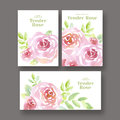 Pale color tender rose flowers card set. Royalty Free Stock Photo