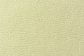 Pale Green Artificial Leather Background Texture Royalty Free Stock Photo