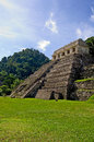 Palenque maya tempel ruins in the jungle of Royalty Free Stock Photography