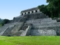 Palenque mayan temple ruins at in mexico Royalty Free Stock Photos