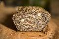 Paleo bread Royalty Free Stock Photo