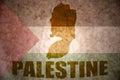 Palestine vintage map