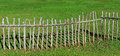 Paling fence made of wooden sticks green pasture Royalty Free Stock Images