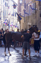 Palio di Siena - july 2003 Royalty Free Stock Image