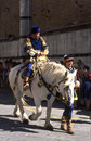Palio di Siena - july 2003 Royalty Free Stock Photography