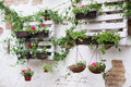 Pallet ideas for gardening
