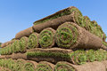 Pallets of sod for new lawn Royalty Free Stock Photography