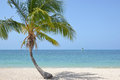 Palm beach Stock Afbeeldingen