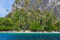 Palm beach nära ett berg Arkivfoto