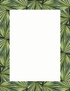 Palm Fronds Frame & Border Royalty Free Stock Photo