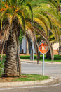 Palm garden in front of house spain Stock Photos