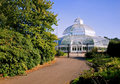 Palm House, Liverpool Stock Photos