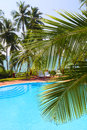 Palm leaf in front of swimming pool by sea the the on a tropical resort Royalty Free Stock Photography