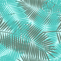 Palm Leaf Seamless Pattern Background Vector Royalty Free Stock Photo