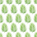 Palm leaf silhouette seamless pattern. Tropical leaves. Royalty Free Stock Photo
