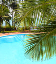 Palm leaf and swimming pool in front of the by the sea on a tropical resort Royalty Free Stock Photos
