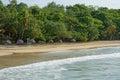 Palm leaf thatch umbrellas on a sandy beach with lush tropical vegetation caribbean sea Stock Image