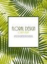 Palm leaf vector frame background illustration eps Royalty Free Stock Image