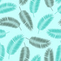 Palm Leaf Vector Seamless Pattern Background Royalty Free Stock Photo