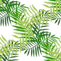 Palm leaves color seamless 3