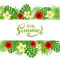 Palm leaves and flowers on white tropical background