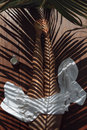Palm leaves reflection on body Royalty Free Stock Photo